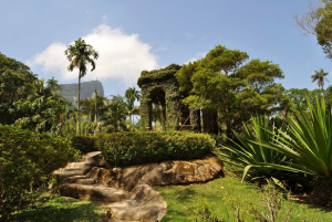 Burble Marx Tropical Gardens Tour Packages